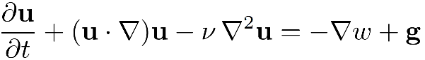 Navier-Stockes Equation